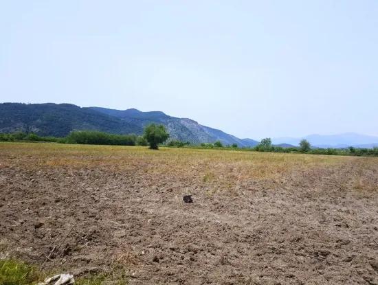 Fruchtbares Land Für Verkauf Berg Güzelyurt Ta Null
