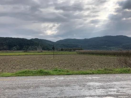 Ta Oriya Güzelyurt Zum Verkauf Farm, Main Road 4900 M2 Null
