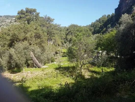 Te Gocek Fethiye With Sea View For Sale, Land, 9500 M2