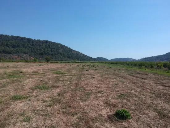 For Sale Land Guzelyurt Ta Oriya, Bargain 9726 M2