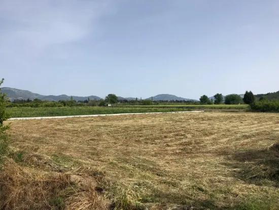 A Bargain Farm For Sale In Fevziye 2000 M2 And Oriya