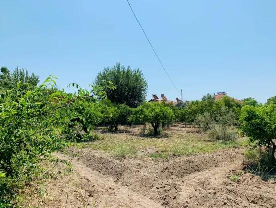 Plot For Sale In Up