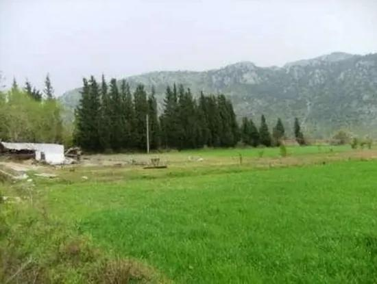 Archers Are Also For Sale, Fertile Land Suitable For Investment