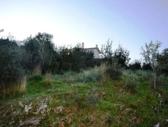 Residential Plot For Sale At Bargain Ula Esentepe