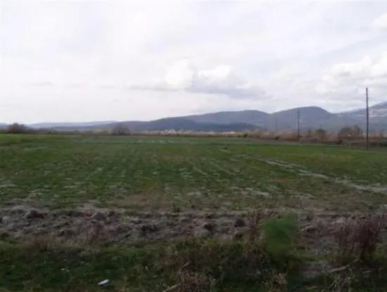Efficient Free Oriya Land For Sale In Eskikoy