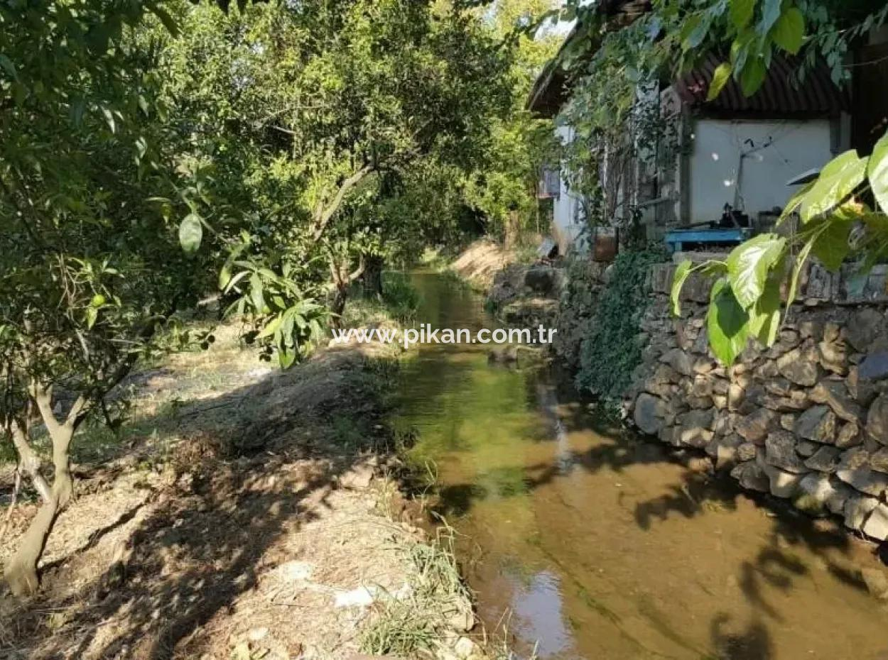 Köyceğiz Köyünde Satılık Kelepir Köy Evi