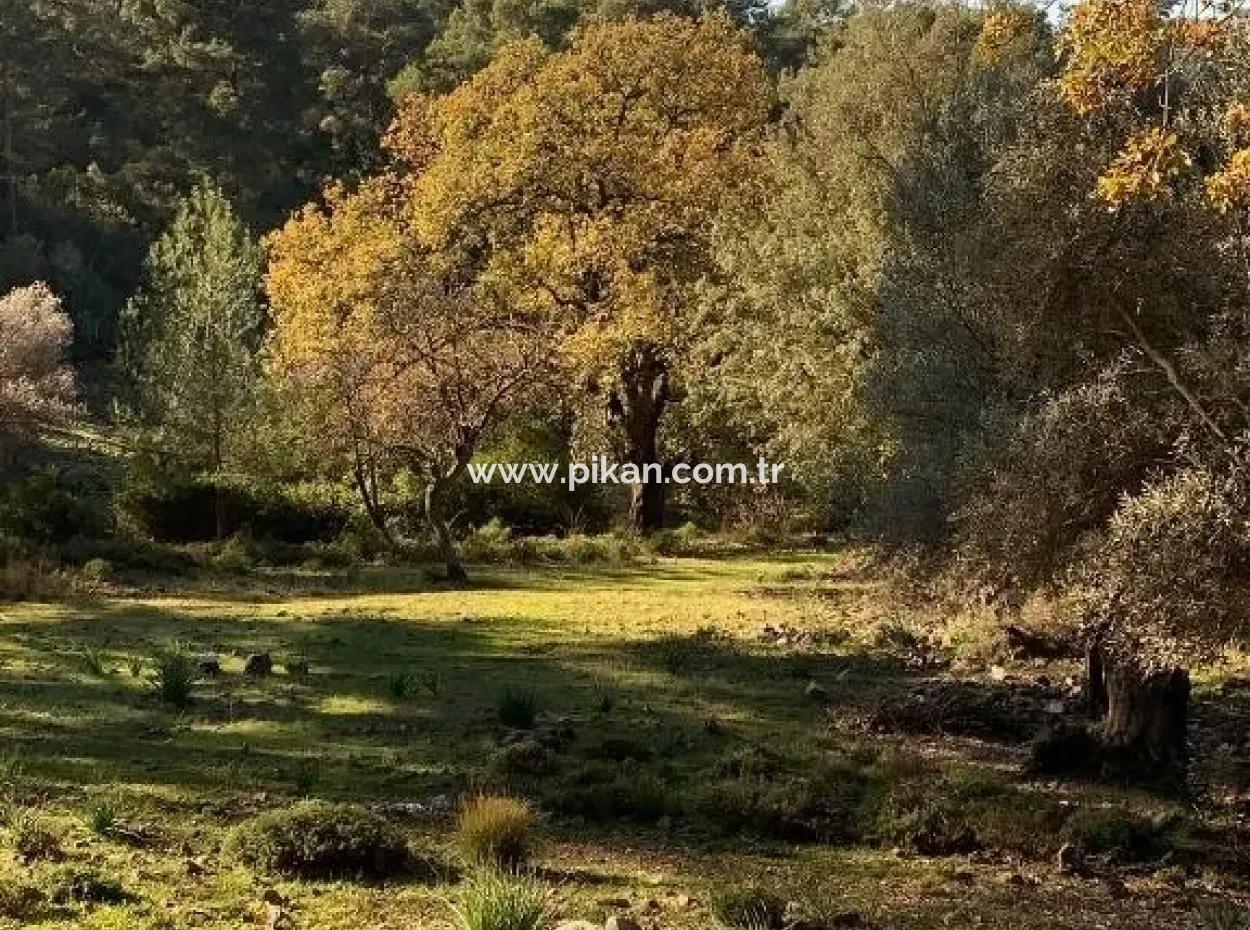 Göcek Te Satılık Yatırıma Uygun Arazi