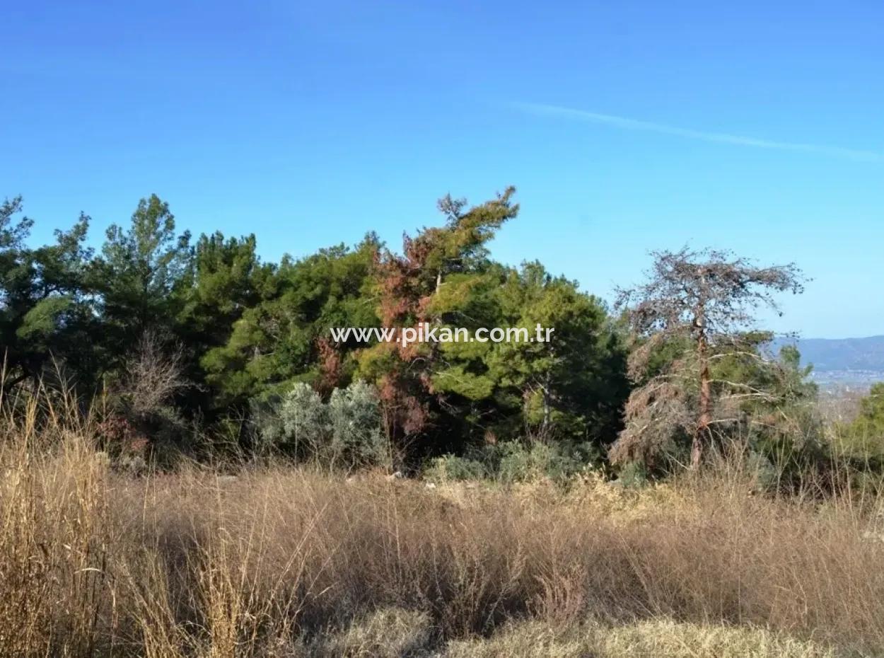 Fethiye Yaka Tlos Satılık Su Kenarı Değerli Arazi