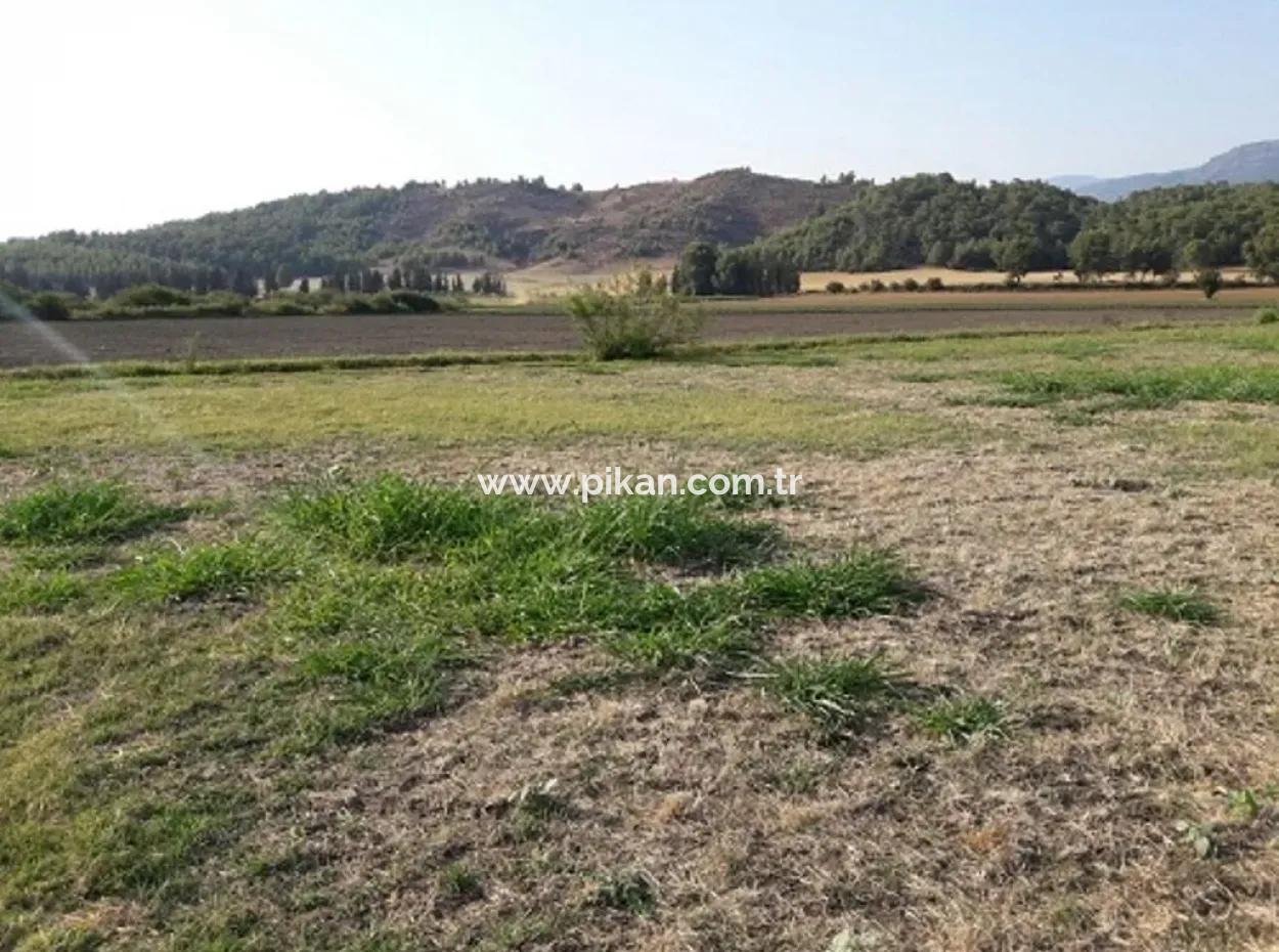 Köyceğiz Köyünde Satılık Sera Yapmaya Uygun Arazi