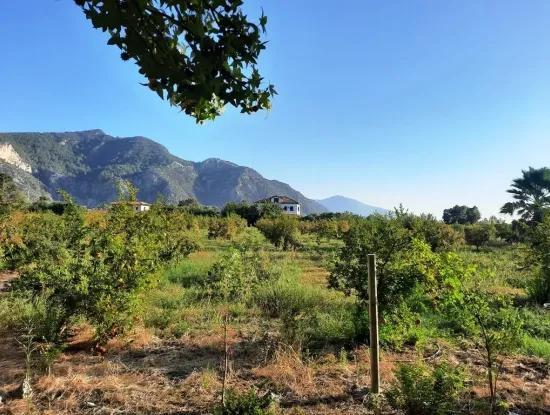 Dalyan Marmarlıda Satılık Yatırıma Uygun Arazi