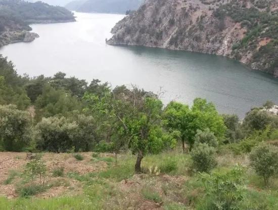 Dalaman Bozbelde Satılık Baraj Gölü Manzaralı Tarla