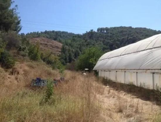 Ekşiliyurtta Satılık Arazi Ve Sera