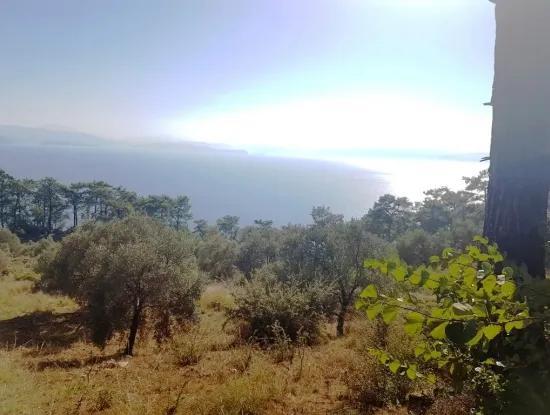 Muğla Menteşe Kıranda Satılık Ful Deniz Manzaralı Arazi
