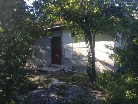 Köyceğiz Yangıda Satılık Arsa Ve Eski Köy Evi