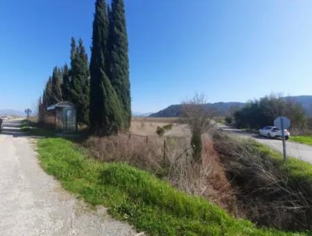 Muğla Ortaca Güzelyurtta Sarıgerme Yolu Cepheli 2256 M2 Tarla Satılık