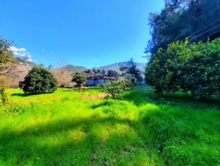 Ortaca Okçularda Satılık Dağ Manzaralı 3000 M2 Arazi