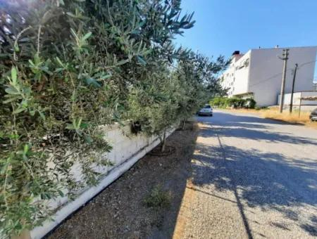 Muğla Ortaca Cumhuriyet Mahallesinde Satılık 3 Kat İmarlı Kelepir Arsa
