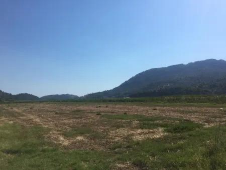 Ortaca Güzelyurt Ta Satılık Arazi, Kelepir 9726 M2