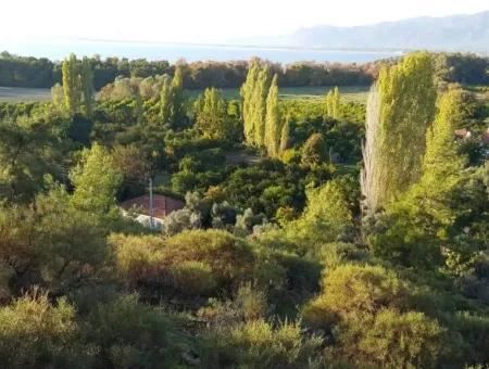 Köyceğiz Köyünde Satılık Bahçe