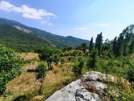 Köyceğiz Yayla, Ağla Köyünde Göl Manzaralı Yatırıma Uygun Müstakil Arazi Satılık